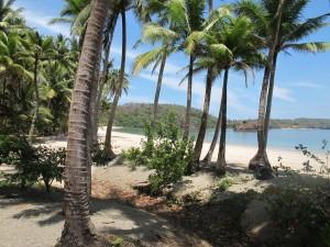 playa paradisíaca en isla Pedro Gonzalez